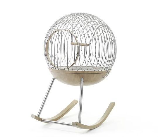chimere cage oiseau