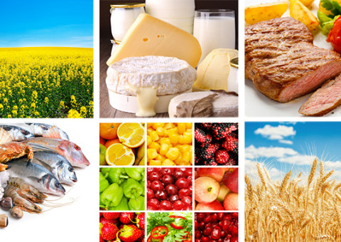 Contrôle de nos aliments : Comment ça marche?