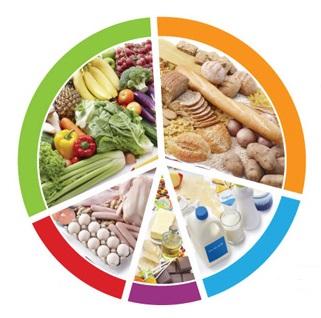 alimentation equilibree et saine