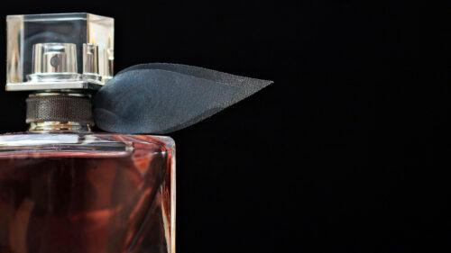 689fc8417d2e4905756d18a449703a63 500x281 - Choisissez un parfum en fonction de vos préférences