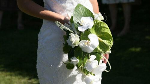 60ad2545ad4ded0181650fc73739dcdd 500x281 - Votre amour est éternel alors votre photo de mariage doit l'être aussi