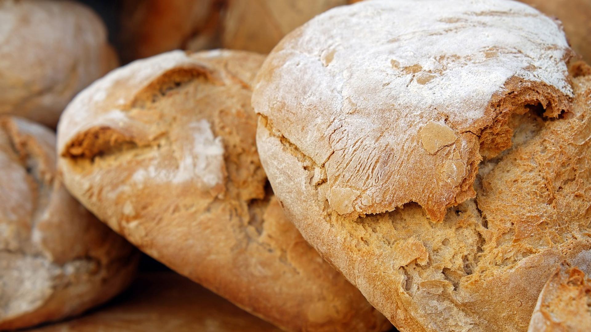 Le robot pétrin, un plus pour réussir votre pain maison.