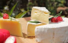 Le fromage, un allié pour la santé et la bonne humeur