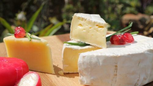 12839549af61938a9871b9cfc268b062 500x281 - Le fromage, un allié pour la santé et la bonne humeur