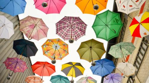 799b477f780a49e625218d5aa0067103 500x281 - Pourquoi le parapluie inversé connait-il autant de succès ?