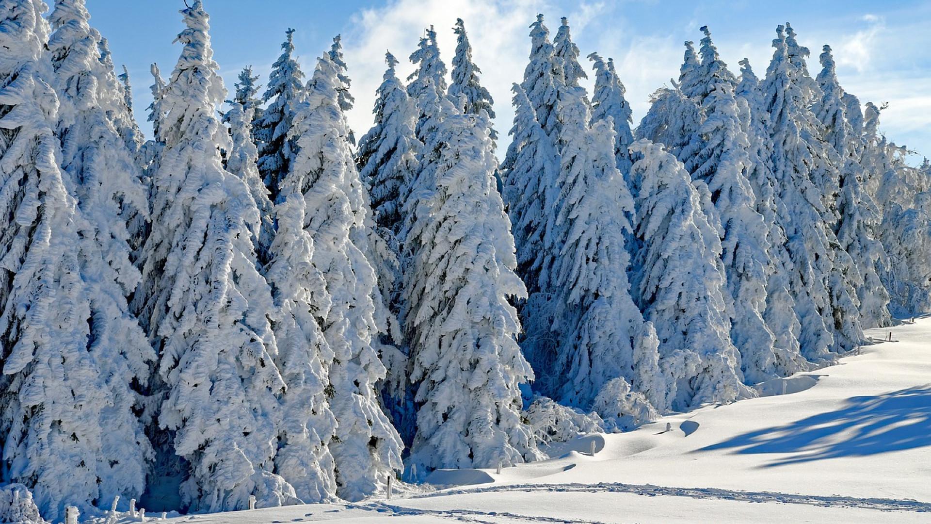 Où partirez-vous cet hiver?