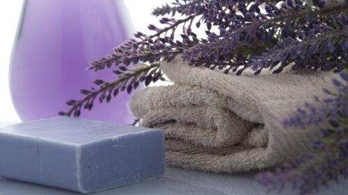 1a9bdd989a5374f61a7f1134d70ad565 500x281 - Comment améliorer les conditions de vie des seniors à leur domicile ?
