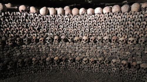 64b378dec9d03931d51221a40b8047fe 500x281 - Osez la découverte des catacombes de Paris