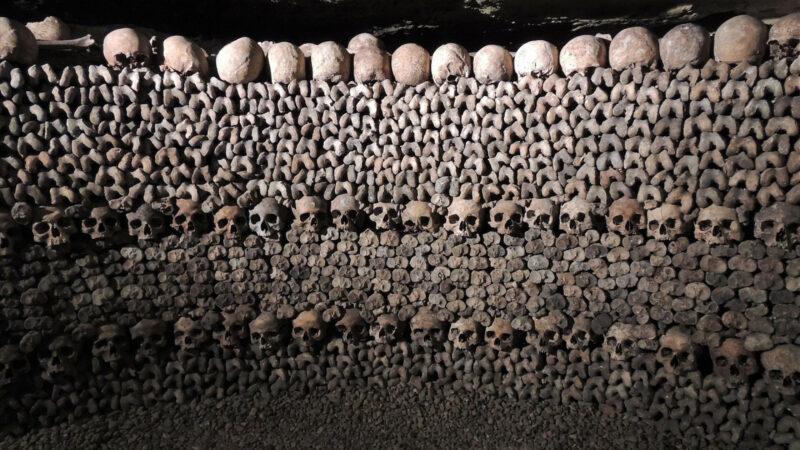 64b378dec9d03931d51221a40b8047fe 800x450 - Osez la découverte des catacombes de Paris
