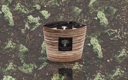 belles ceramiques aromes suggestifs anti moustiques voici la nouvelle bougie baobab 5e5e94fb49e83 - Voici la nouvelle bougie Baobab - Belles céramiques, arômes suggestifs, anti-moustiques