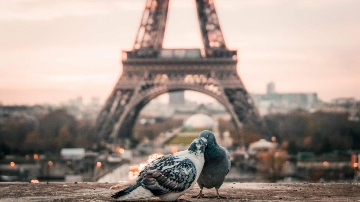 7cf4ee94061b7c48788c88097bbe5447 1200x675 - Quelles astuces pour réussir son séjour à Paris ?