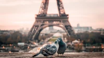 7cf4ee94061b7c48788c88097bbe5447 400x225 - Quelles astuces pour réussir son séjour à Paris ?