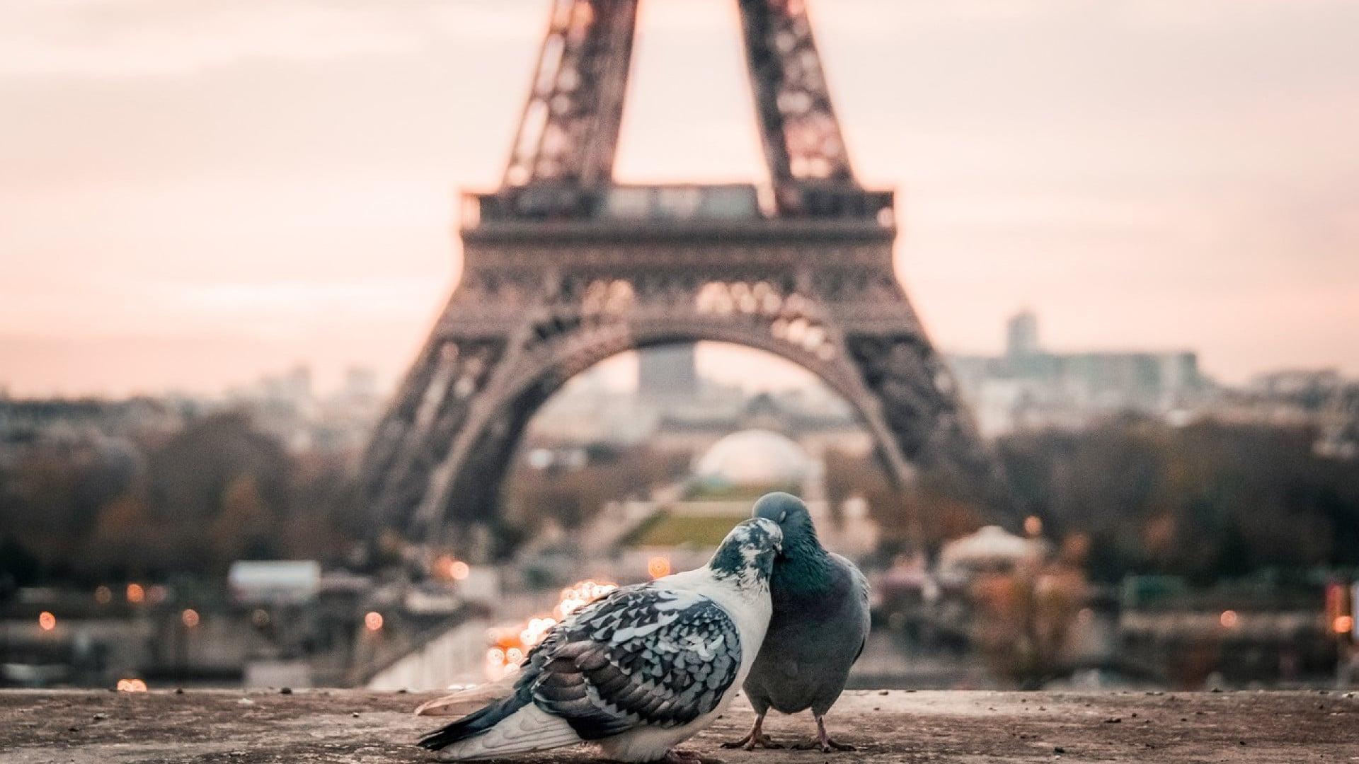 Quelles astuces pour réussir son séjour à Paris ?