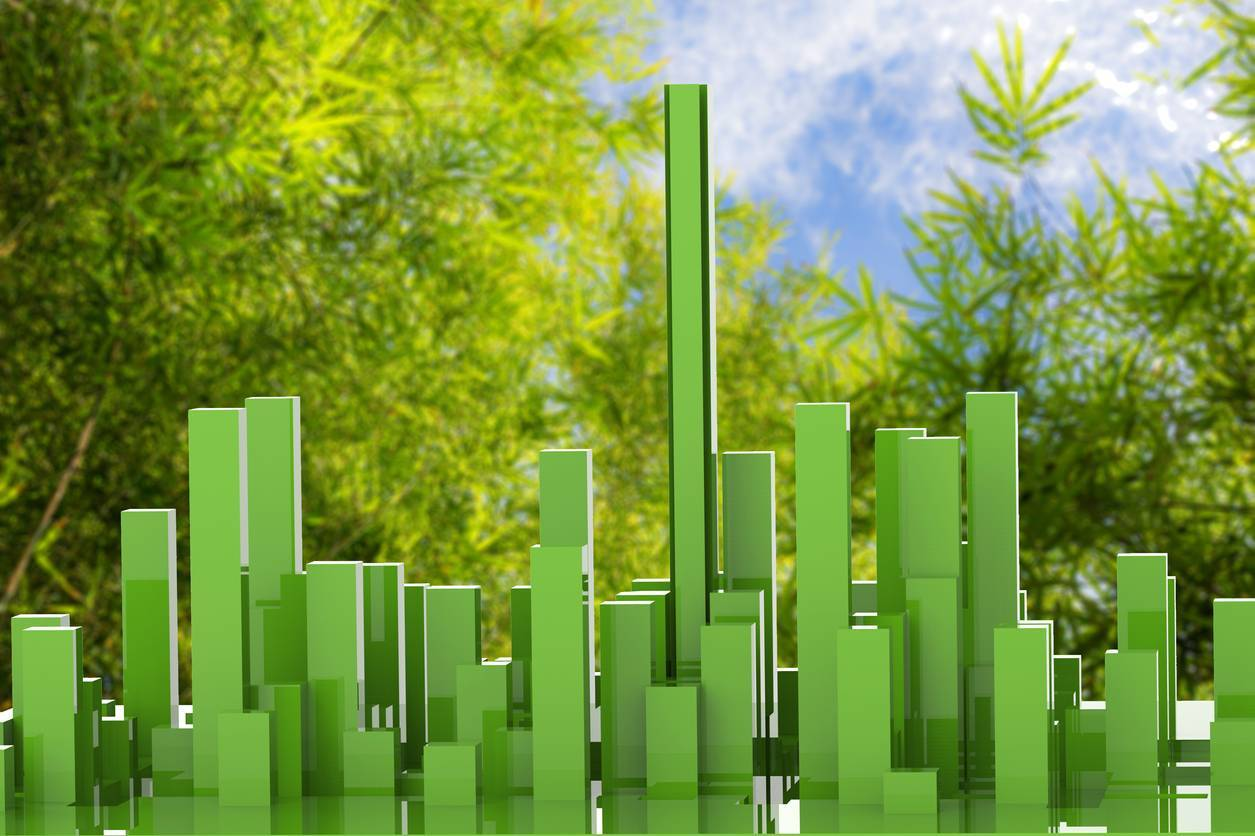 image habitat comment - Comment rendre son habitat plus écolo ?