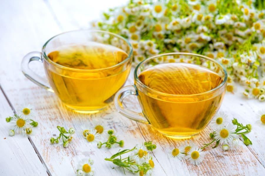 Quels sont les avantages et les inconvénients du thé?