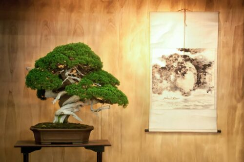 visu decorations oriental 500x332 - Tableau oriental : osez les décorations colorées et design !